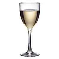 Polysafe Wine Goblet 250ml